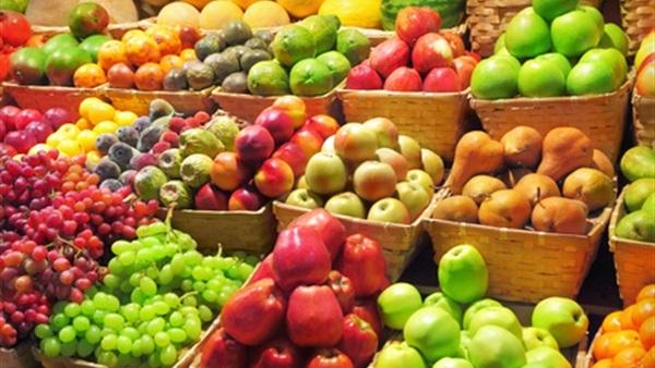 تعرف على ضوابط تصدير الخضر والفاكهة بين مصر والإمارات × 10 معلومات